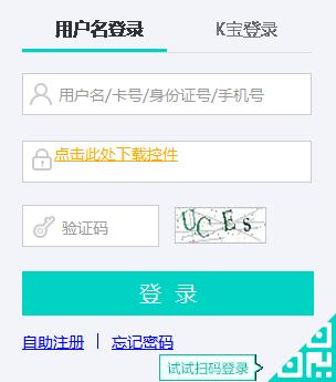 农业银行官网登录入口_农业银行官网登录指引
